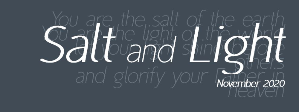 Salt and light banner
