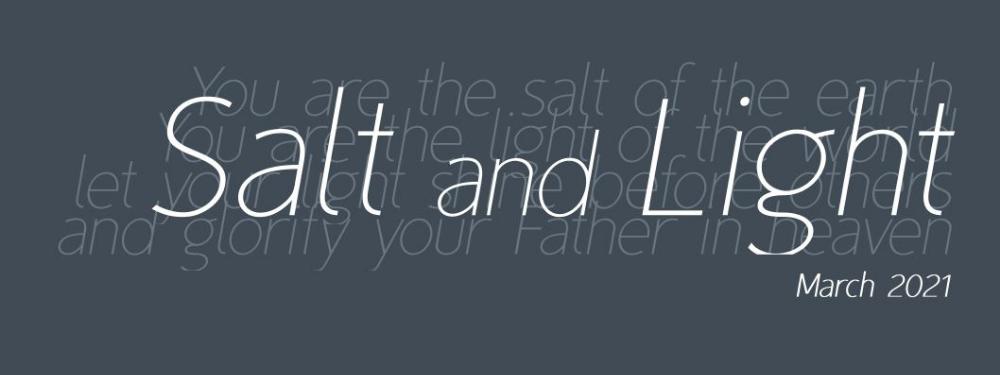 Salt and Light newsletter header