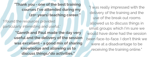Feedback from online teacher training
